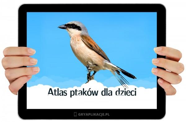 atlas-ptakow-1