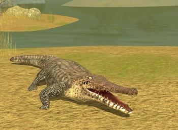 Zostań krokodylem!
