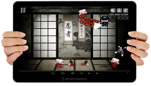 ninja pocket sceen